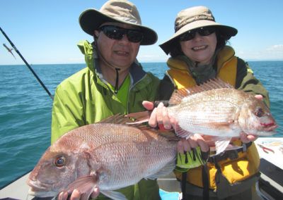 Snapper by softbait